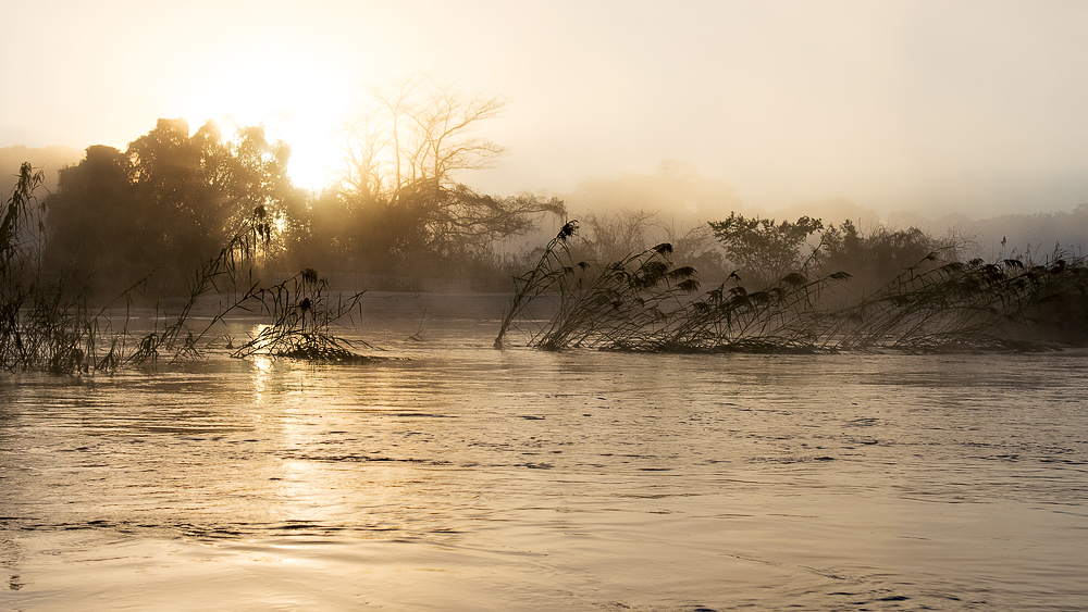 Wüste & Delta - Morgennebel am Okavango