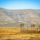 Wüste Fuerteventura