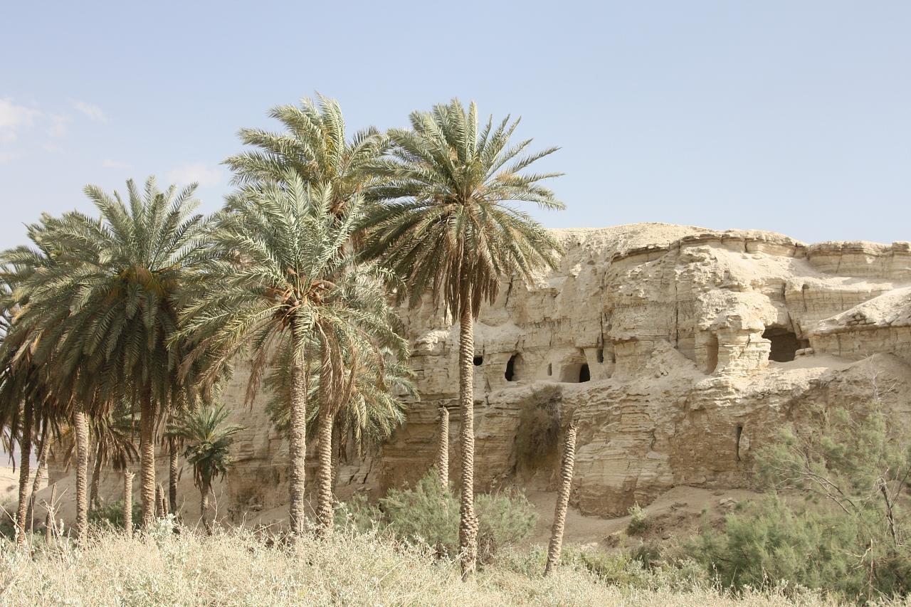 Wüste Israel 1