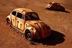 wüste Käfer