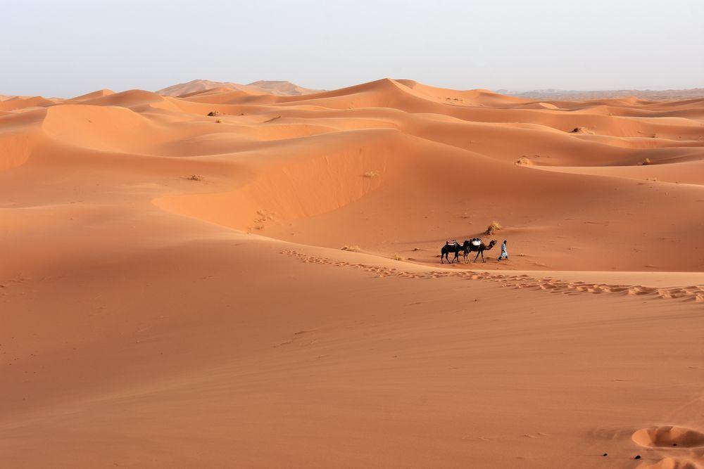 Wüstenidylle im Erg Chebbi im Süden von Marokko
