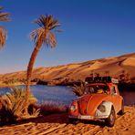 Wüstenkäfer - Mit einem VW-Käfer durch die Libysche Sahara