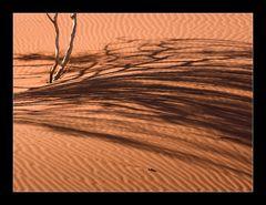 wüste(n)kunst