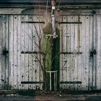Wunderbare Hinterhof-Tristesse