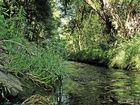 Wunderbare Natur
