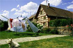 wunderbarer Sommertag in Hemishofen