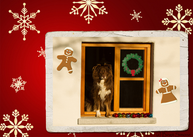 Wunderschöne Weihnachten!!!!