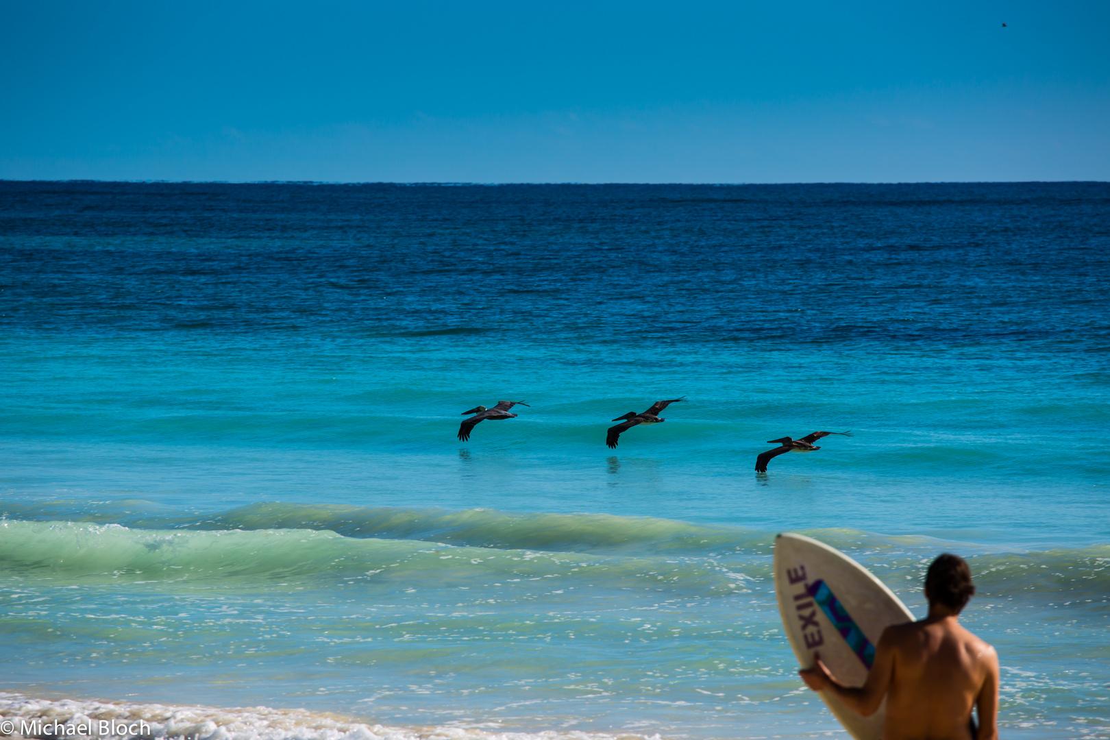 Wunderschöner Tag Am Strand Foto Bild North America Mexico