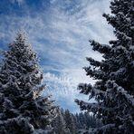 Wunderschöner Winterhimmel