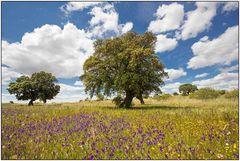 Wundervolle Extremadura