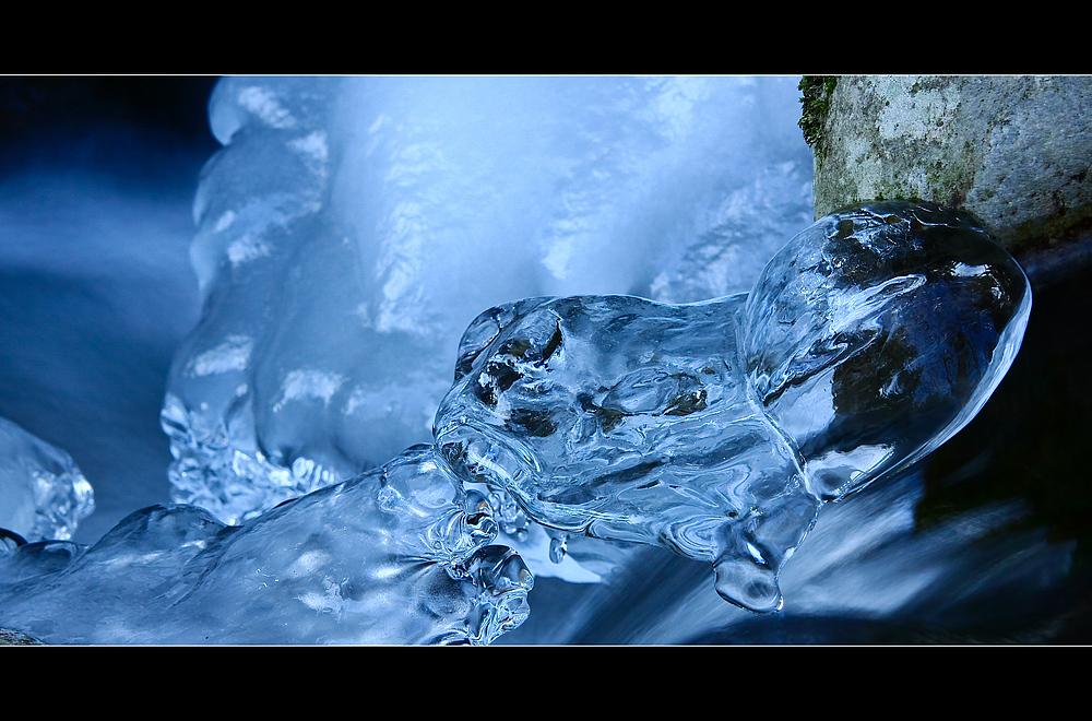 """""""Wunderwelt Wasser"""""""
