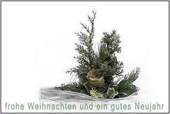 Wunsch 634