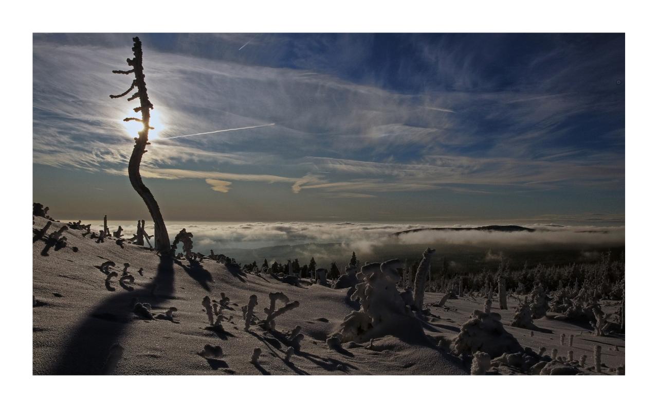 """Wurmberg / Harz """" der Blick vom höchsten Berg in Niedersachsen """""""