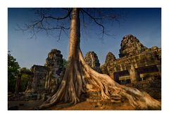 Wurzeln erobern den Tempel von Sa Srang
