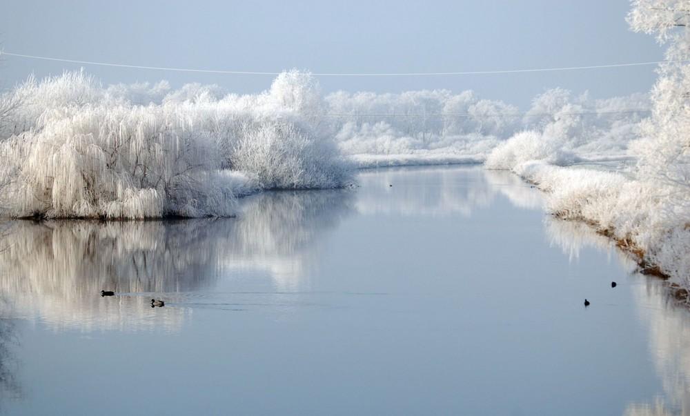 www Winter an den Wümmewiesen punkt hb