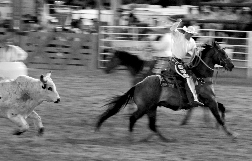 WY Rodeo 02