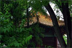 Xi'an - Forêt des Stèles