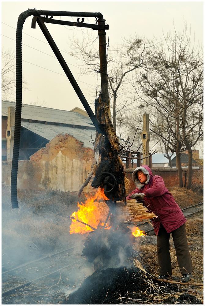 Xingyang - Frost in Henan 2011 / 1