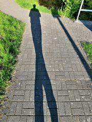 Y - Schatten