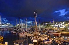 Yachthafen und Kreuzfahrtterminal von Funchal