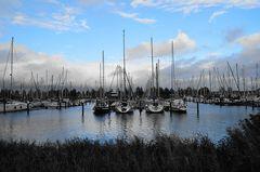 Yachthafen von Workum # 5546