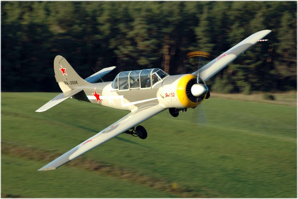 YAK 52 im tiefen Überflug