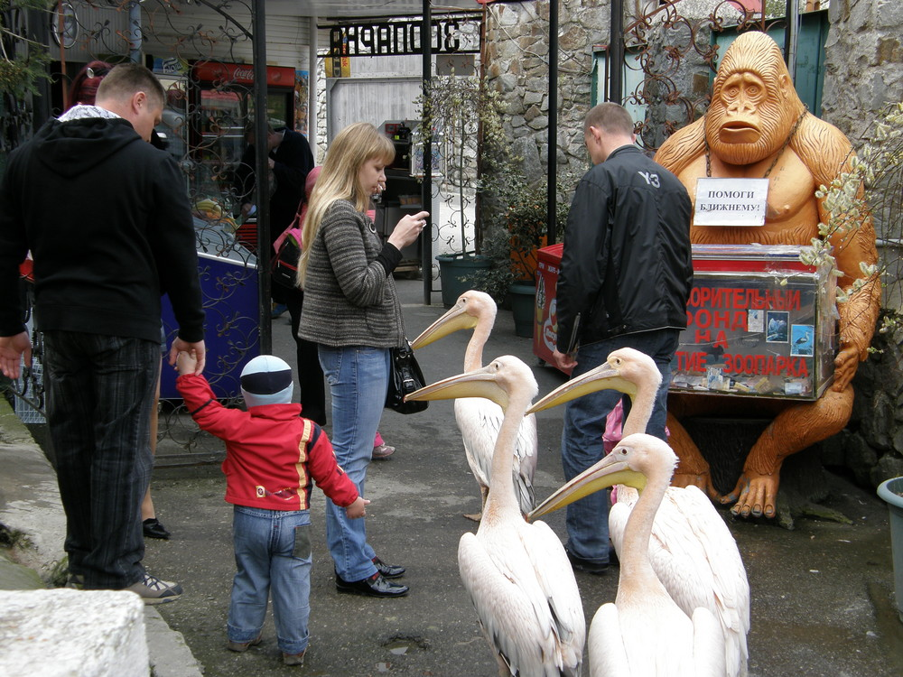 Yalta zoo Crimea