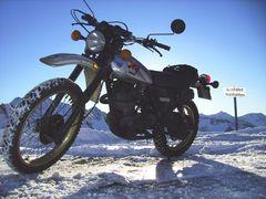 Yamaha XT 500 Bj 81