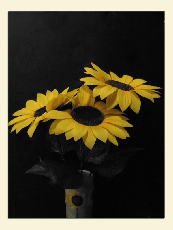 Yellow beauty!