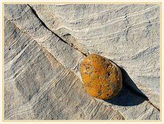 Yellow stone 1