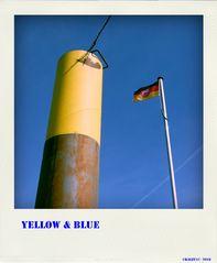 Yellow@Pola