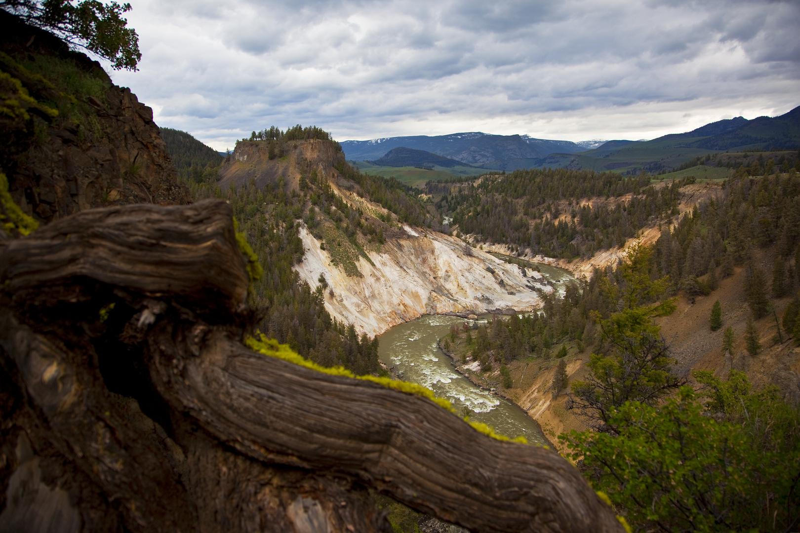 Yellowstone 2011/10