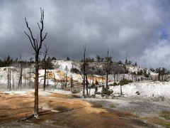 Yellowstone im September, Bild 2