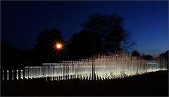 YI Garten Kassel