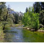 Yosemite Nationalpark*