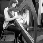 Young Irish Harpist - Sligo 2010
