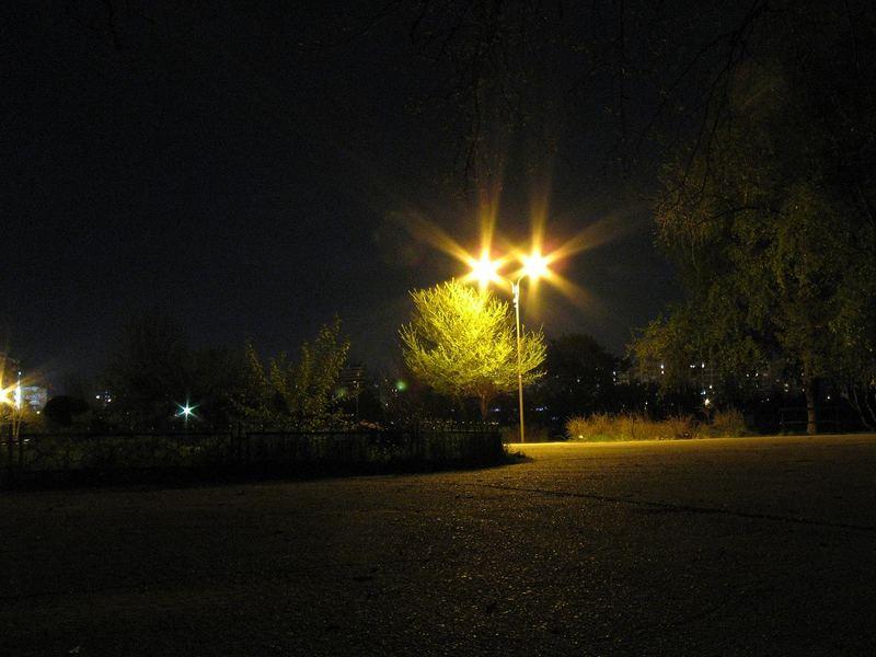 You're my guiding light