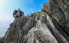 Yunnan (7)- Elefant