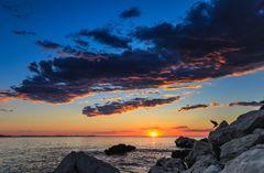 Zadar Sonnenuntergang mit Vogel