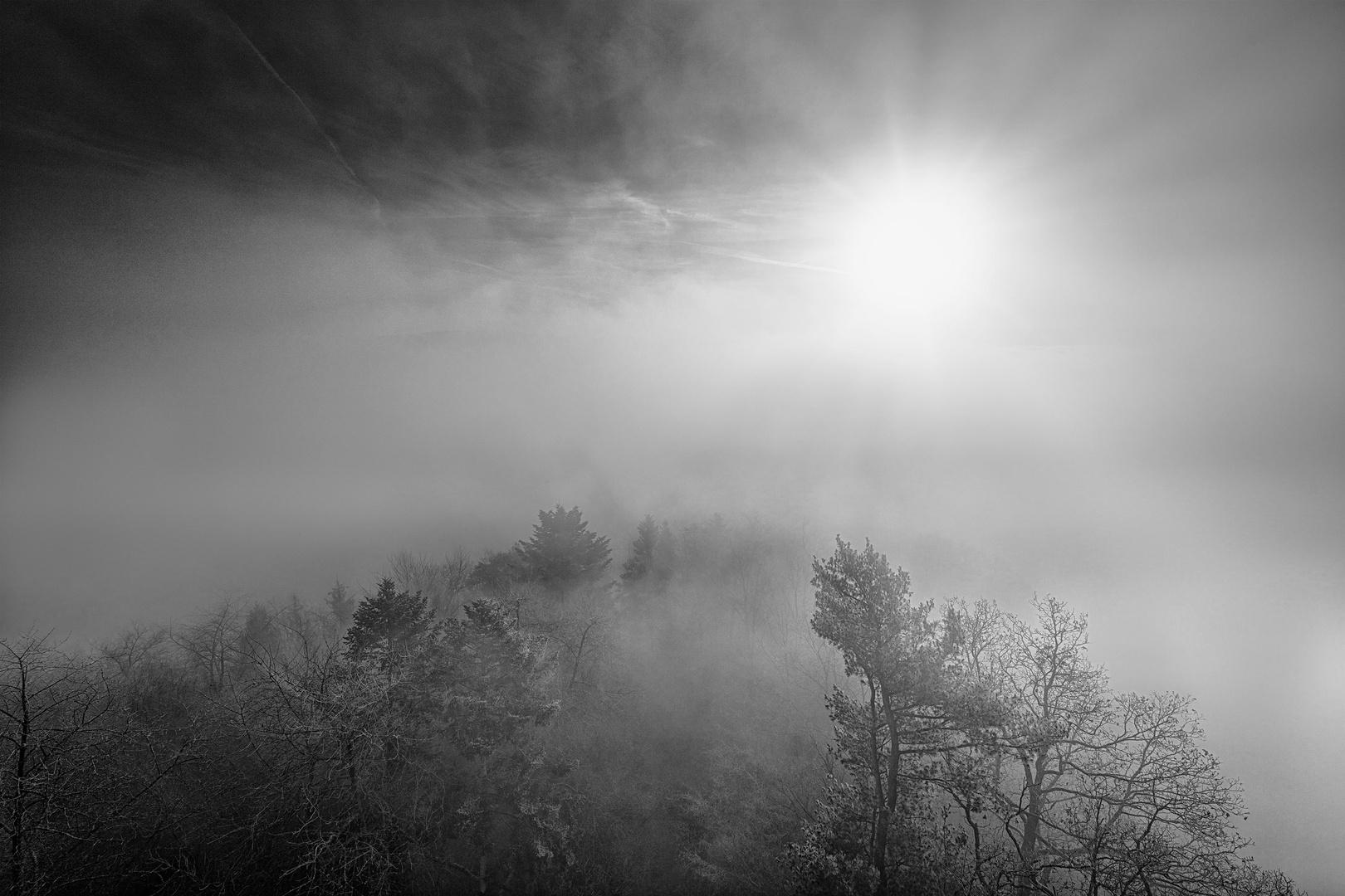 Zäher Nebel