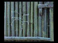 """...zärtliche Berührung... - AUSSTELLUNGS-FOTO """"WERDEN UND VERGEHEN"""""""
