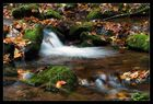 Zahme Gera im Herbst