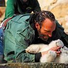 Zahnpflege bei Knut ...