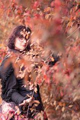 Zana im Herbst I