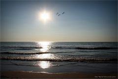 Zandvoort ......