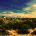 Zandvoort -NL (Dünen) II