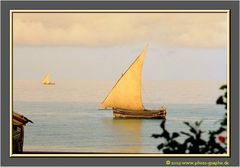 Zanzibar 2001 - Dhow at Sunset - Stone Town