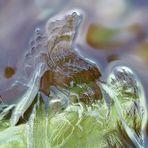 Zarte Engelsflügel aus Eis! Makroaufnahme der feinen Eisschicht, die einen alten Brunnen bedeckt.