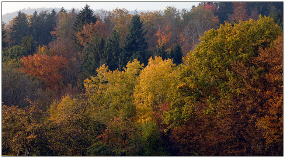 Zarter Herbst