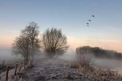 zauber des morgens
